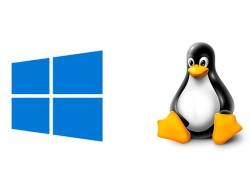 Windows vs. Linux: Which Server is Better for You?